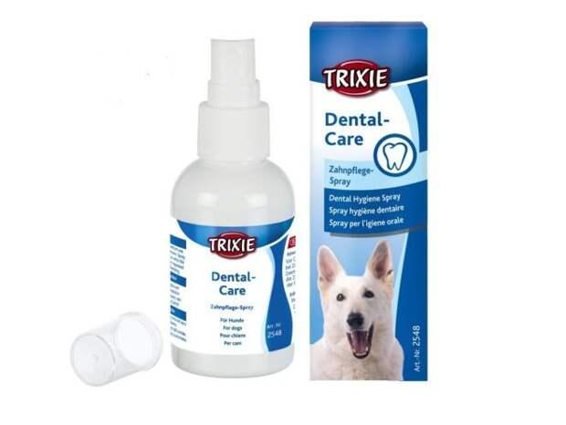 Чистка зубов собаке – выбор подходящего средства, правила чистки, особенности ультразвуковой процедуры