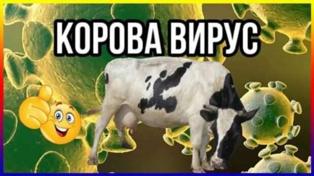 Демотиваторы про коронавирус с надписями. Подборка chert-poberi-dem-koronavirus-chert-poberi-dem-koronavirus-17330614122020-2 картинка chert-poberi-dem-koronavirus-17330614122020-2