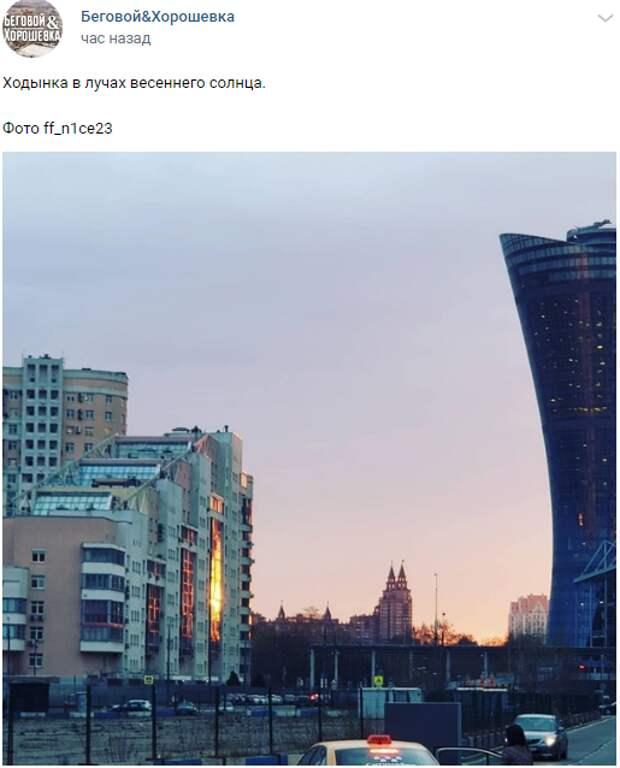 Фото дня: рассвет на Ходынке