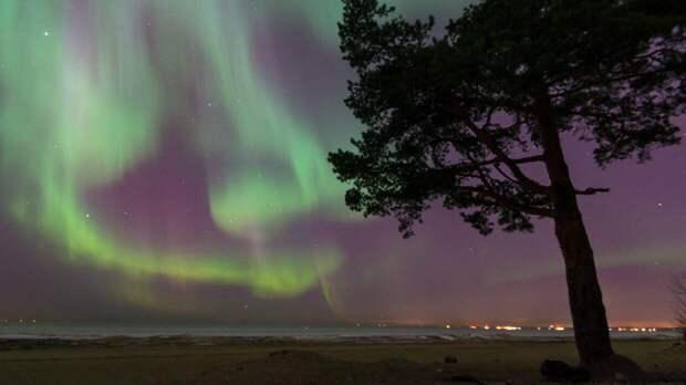 Уникальное северное сияние может появиться 13 и 14 мая на Урале
