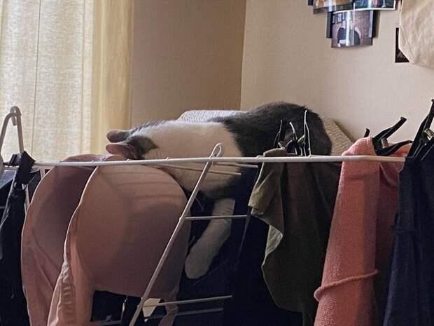 В её распоряжении весь дом, но она спит на влажном белье, на неустойчивой сушилке