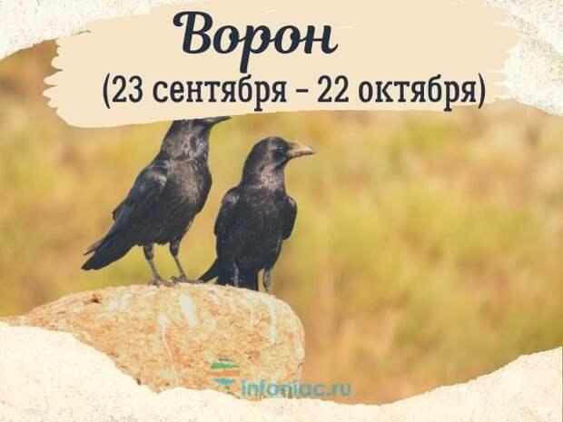 ИНДЕЙСКИЙ ГОРОСКОП