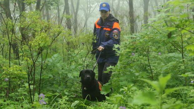 Найдены пропавшие в районе горы Фалаза три туристки