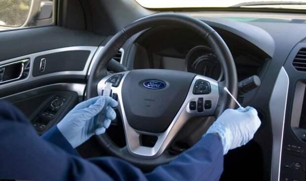 Вы чистите руль в машине? На нем бактерий в 10 раз больше...
