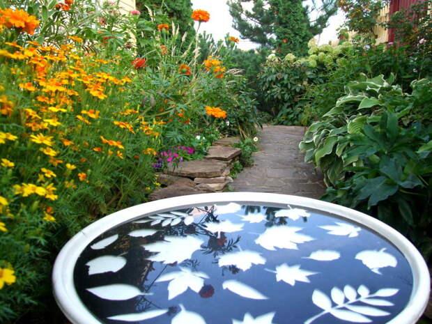 Урожай для декора: украшаем дачный домик