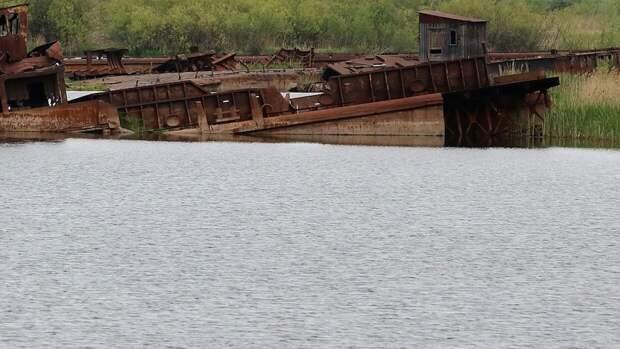 Тело пропавшего школьника нашли в реке Прохладная под Калининградом