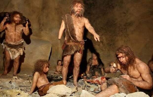 От неандертальцев до первых людей: новые исследования  ученых об этапах  эволюции