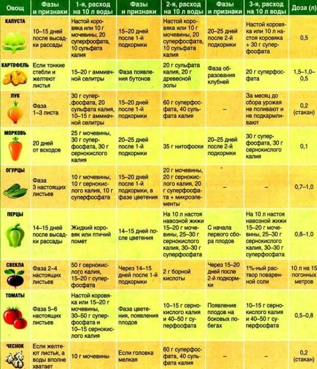 Таблица подкормки растений. Сохраняйте себе.