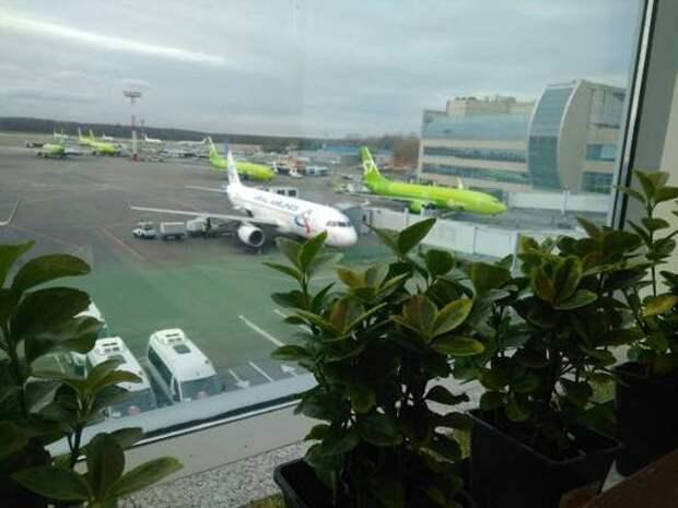 """Авиакомпания """"ИрАэро"""" объявляет о старте ..."""