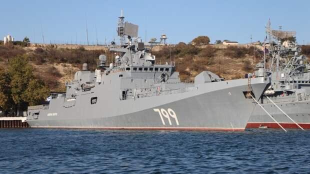 Дандыкин рассказал, кого первым НАТО отправит под удар Черноморского флота РФ