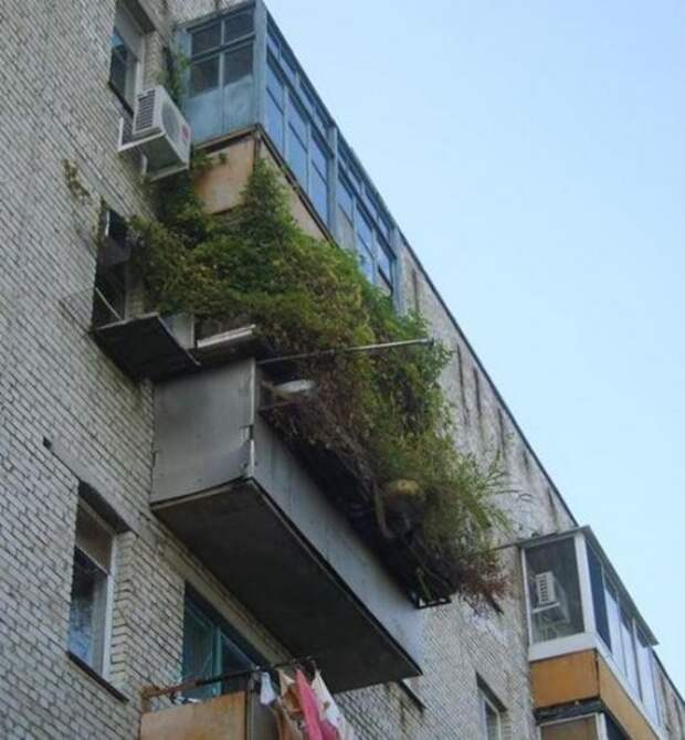 1448884925_balkony