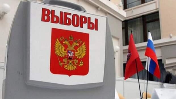 Социолог Шугалей раскритиковал избирательную кампанию в Петербурге