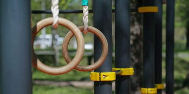 В парке «Северное Тушино» открылся сезон воркаута