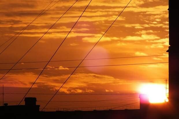 Терапевт для повышения иммунитета посоветовала не экономить на электричестве