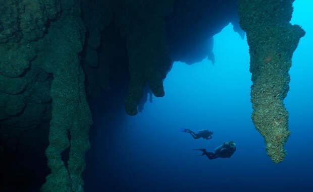 10 чудес морской бездны, укрытых толщей воды