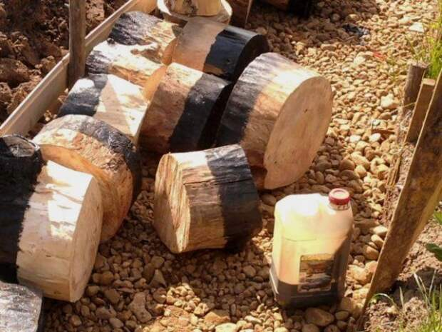 древесные спилы для дорожки