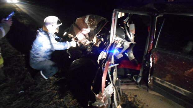 Один человек пострадал ваварии сКамАЗом вРостовской области