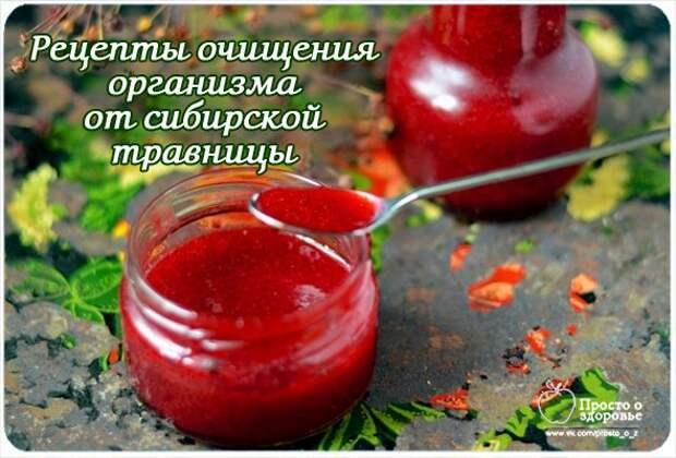 Рецепты очищения организма от А. М. Корепановой