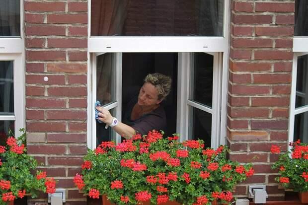 Благодаря чему хозяйки моют окна только два раза в год, а они всё равно чистые