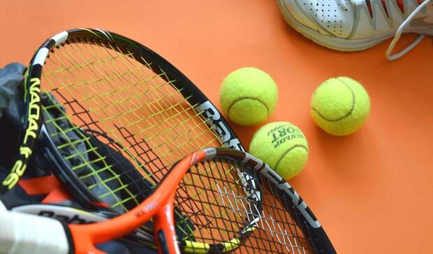 Теннисистка Малых обвинила тренера впобоях