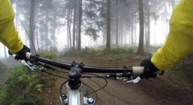 Катаемся на велосипеде и собираем подснежники