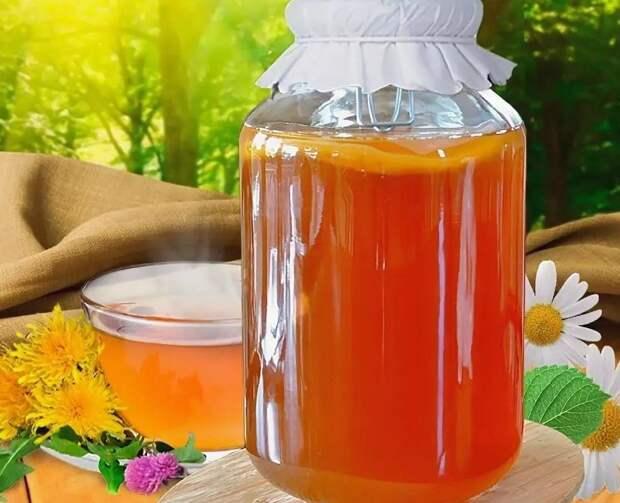 Чайный гриб, комбуча, полезный и вкусный газированный напиток