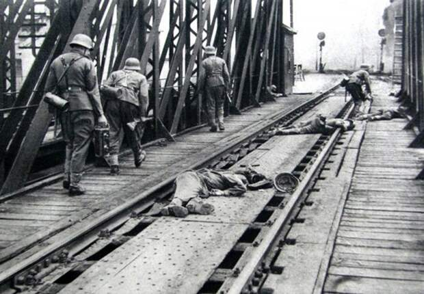 Первые победы Красной Армии. 1941 год