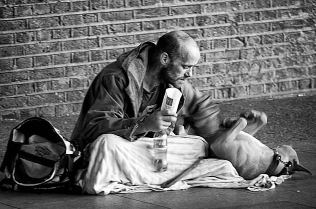 Фотографии, доказывающие, что собаки любят вас независимо от того, сколько у вас денег