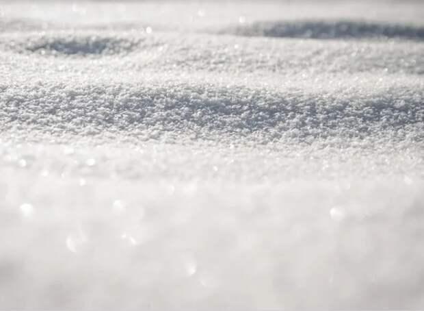 В Алтайском крае упавший с крыши снег лишил жизни четверых