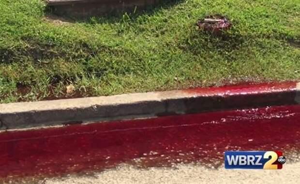 Фильм ужасов наяву - автодорогу залило кровью