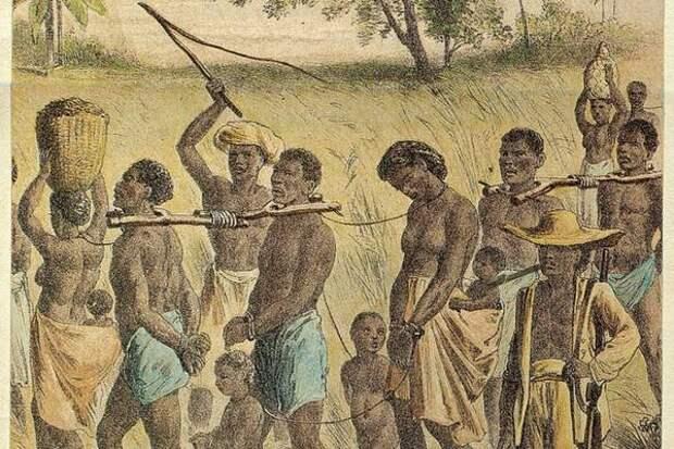 На Карибах найдено кладбище рабов на бывшей плантации XVIII века