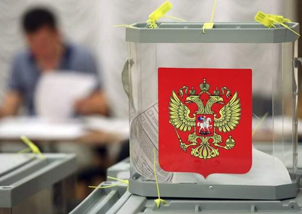 Член СПЧ рассказал, как молодые юристы могут улучшить избирательную систему