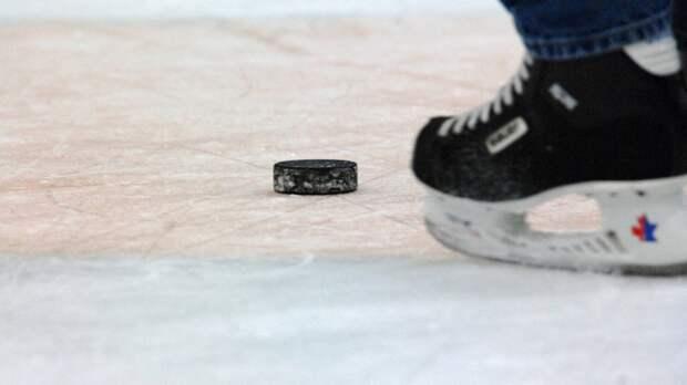Большой хоккей вернулся в Республику Мордовия