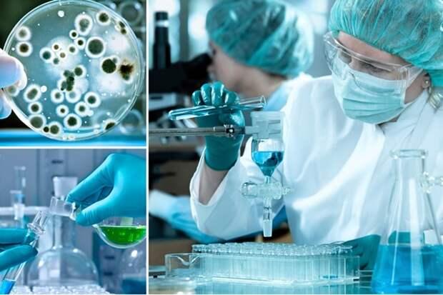 Россия закончила создание собственной вакцины против Эболы