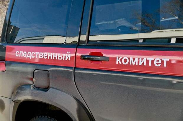 В Нижегородской области обнаружили тело убитой школьницы