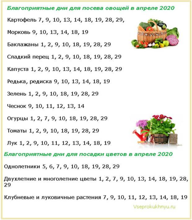 Лунный посевной календарь садоводов и огородников на 2021 год