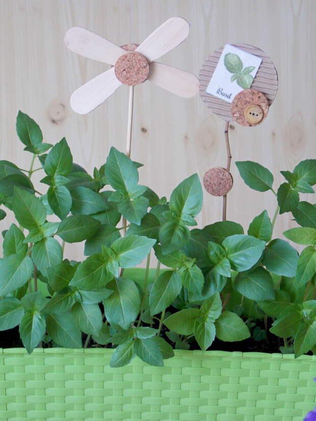 Симпатичные и простые указатели для комнатных растений своими руками