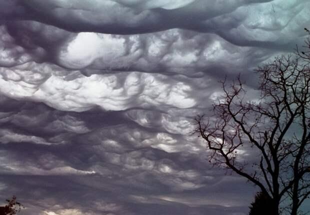Асператус - самые устрашающие формы, которые только могут принимать облака