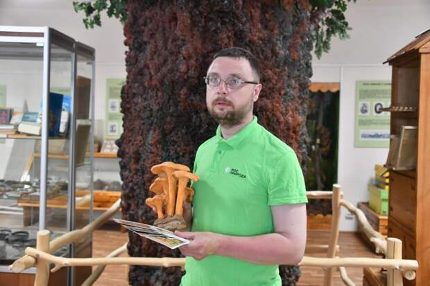 Эколог из парка «Кузьминки-Люблино» развеял миф о сборе грибов