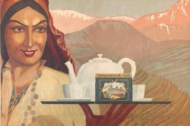 Качество современного чая из Грузии не уступает аналогам / Фото: 1coffee.ru
