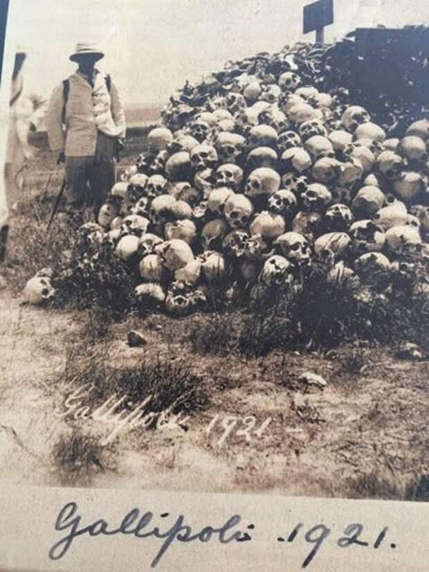 Первая мировая.  история, люди, фото