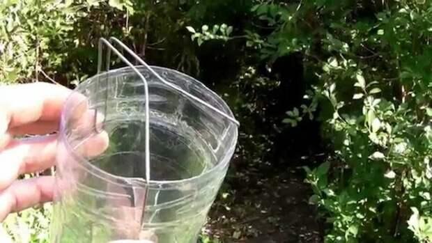 3 простых самодельных приспособления, которые здорово пригодятся для сбора урожая ягод
