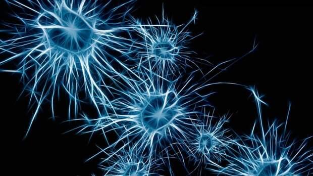 Назван способ предотвратить болезнь Альцгеймера