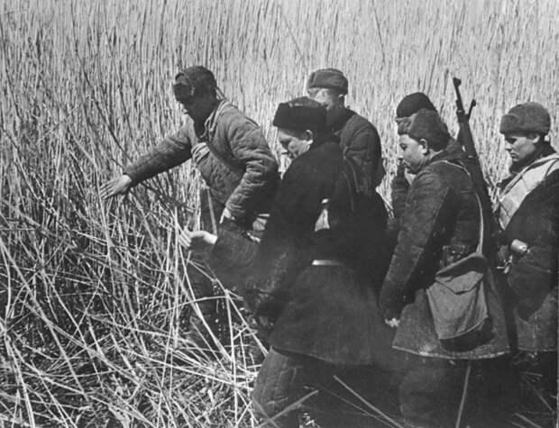 Партизанская война в СССР