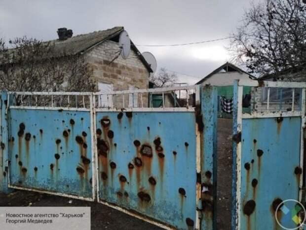 «Пусть тоже в подвале побудет»: Зеленскому предложили «поседеть под ударами ВСУ» в Донбассе