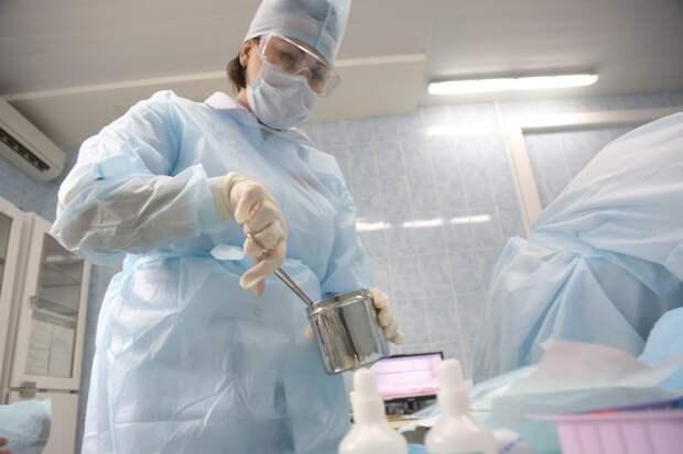 Пункты вакцинации животных откроются в феврале на Лодочной и улице Василия Петушкова