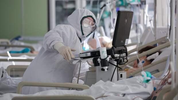 Как умение свиней дышать через задницу поможет спасать больных COVID-19 от смерти