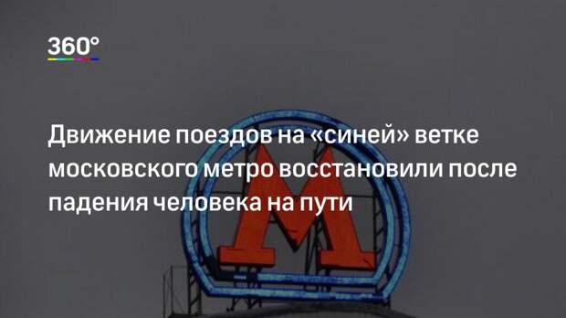 Движение поездов на «синей» ветке московского метро восстановили после падения человека на пути