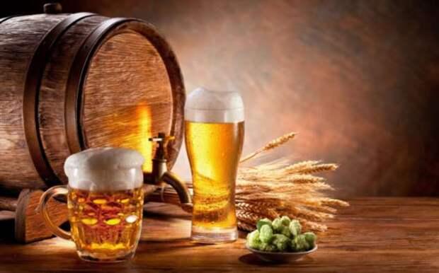 Зачем смешивать пиво и рассол: лайфхак, который сбивает с толку