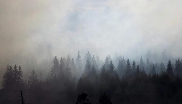 Петрозаводчан предупредили о возможном запахе дыма